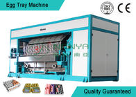 Fashion Paper Rotary Egg Tray Machine 6000 Pcs/H Egg Tray Forming Machine